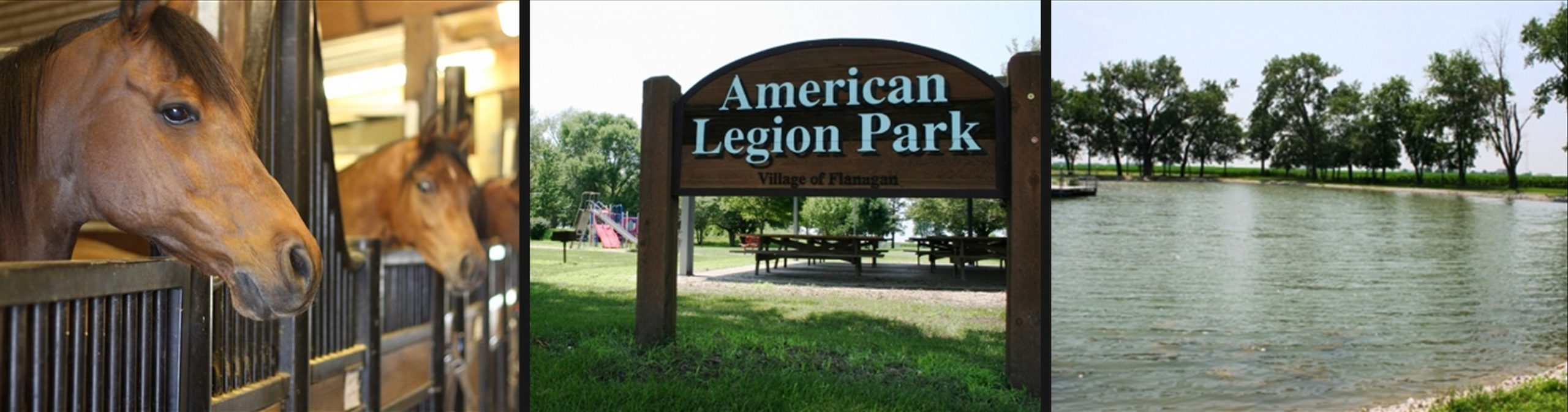 Flanagan Illinois Attractions: Horses at Salem4Youth ranch, American Legion Park, and lake with trees